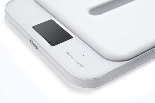 smart-kid-scale-3-500x333