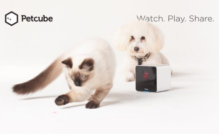 Petcube Wireless Camera